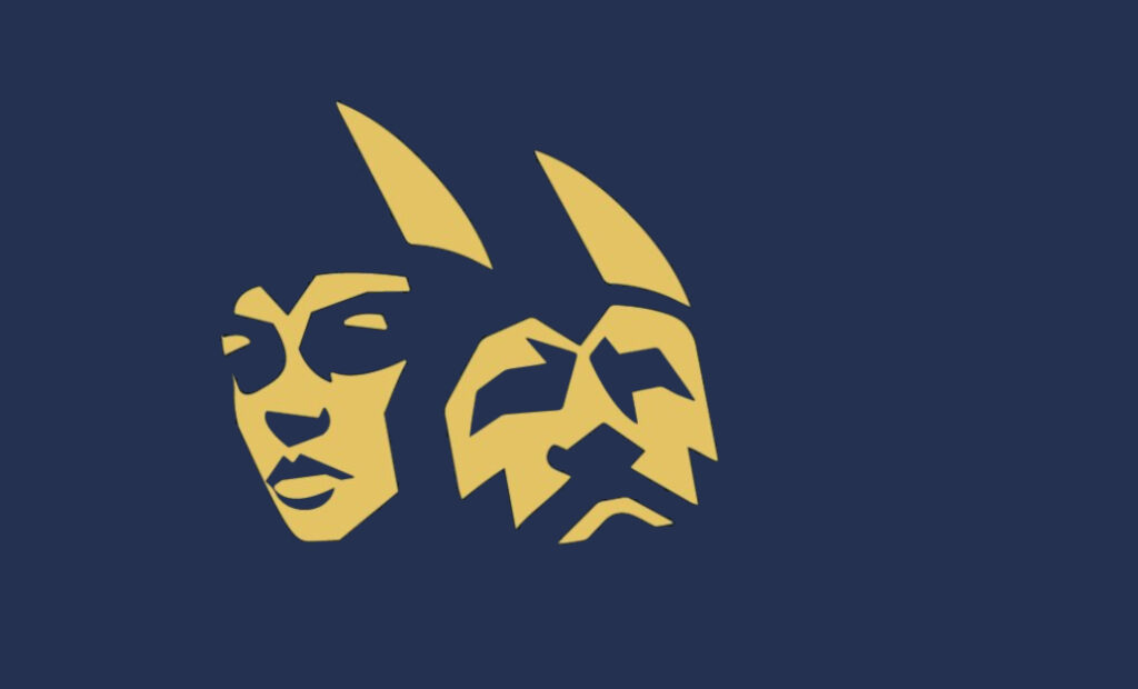 Oris Dental er supportere av Viking i Stavanger.